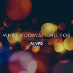 Silver Cities - What You Waiting For- Single